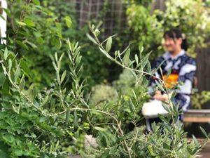 キモノワールドライフ 着物相談 長野 松本散策